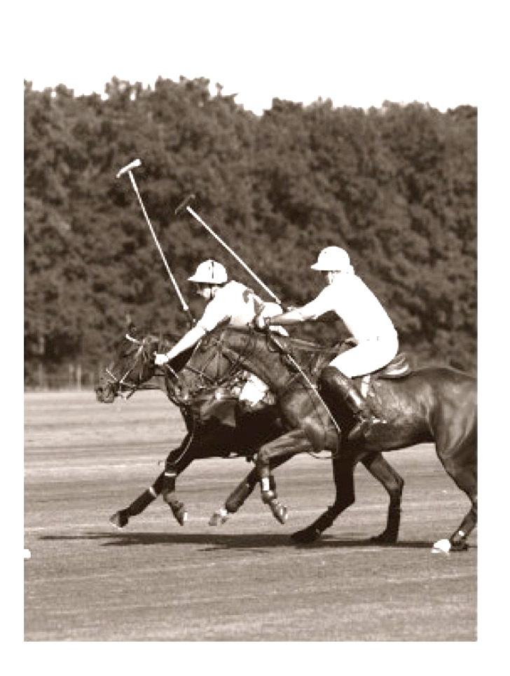 Игра в поло на лошадях