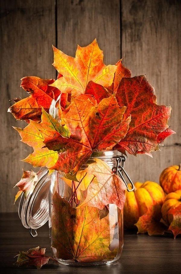 Сухие осенние листья в банке