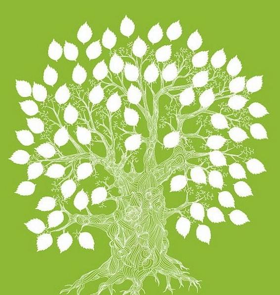 Зелено-белое фамильное дерево