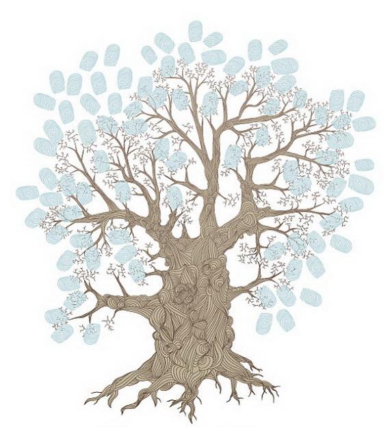 Коричнево-голубое фамильное дерево
