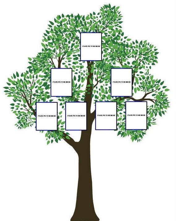 Рамки для фотографий на фамильном дереве