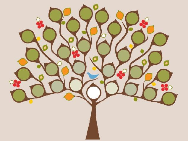 Красивые лепестки на фамильном дереве