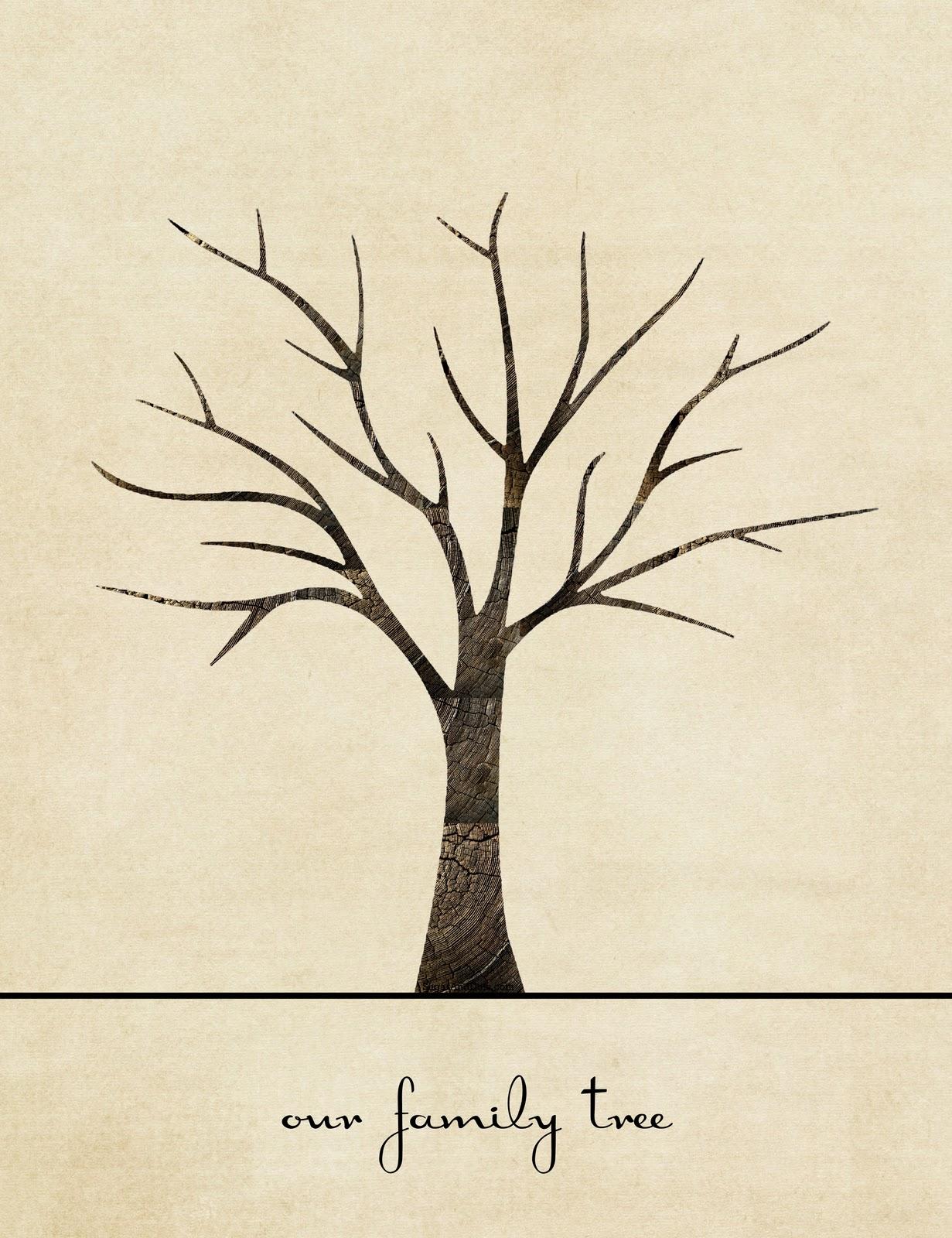 Рисунок фамильного дерева карандашом