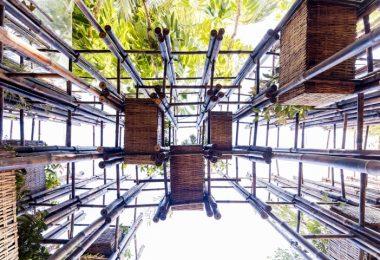Фасад из бамбука: павильон изнутри