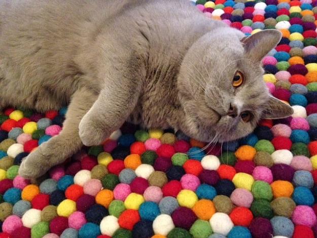 Кот на коврике из шерстяных шариков