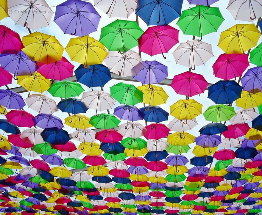 Разноцвентые зонты
