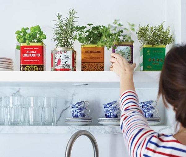 Банки из-под чая и сыпучих продуктов в качестве ёмкостей для пряностей