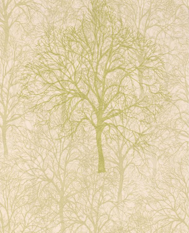 Зеленоватый оттенок голых деревьев на обоях Enchant-Blonde