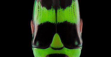 Яркие макро фотографии насекомых от Паскаля Гоэ