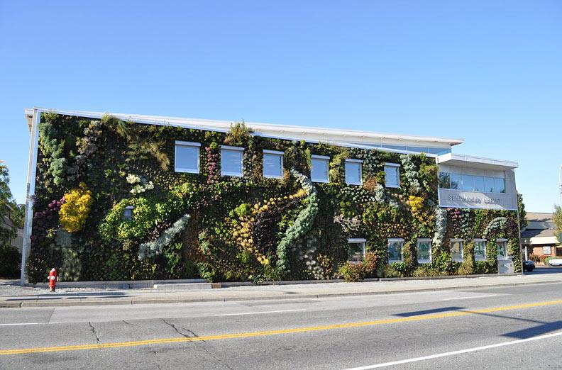 Растения на The Semiahmoo Library Green Wall