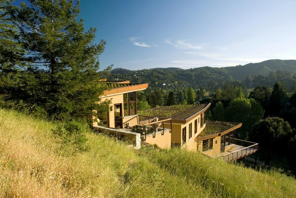 Растения на Трёхуровневый современный дом в Калифорнии