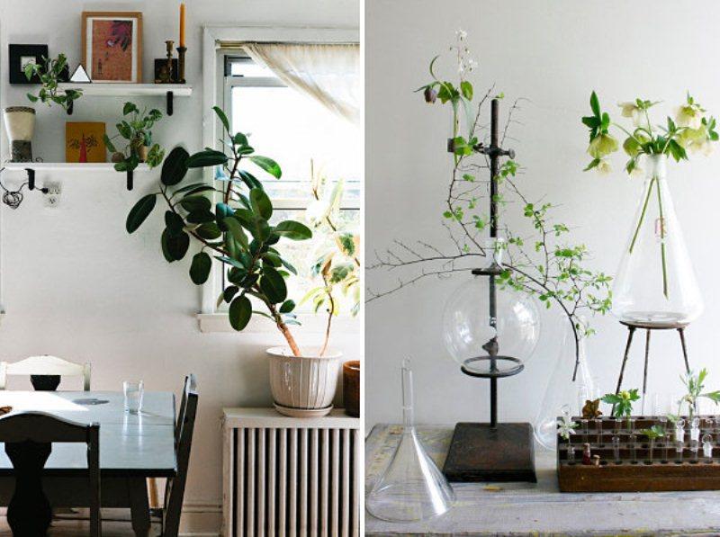20 unforgettable indoor plant displays &amp