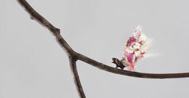 Аки Иномата: модные коконы для моли из фрагментов женской одежды