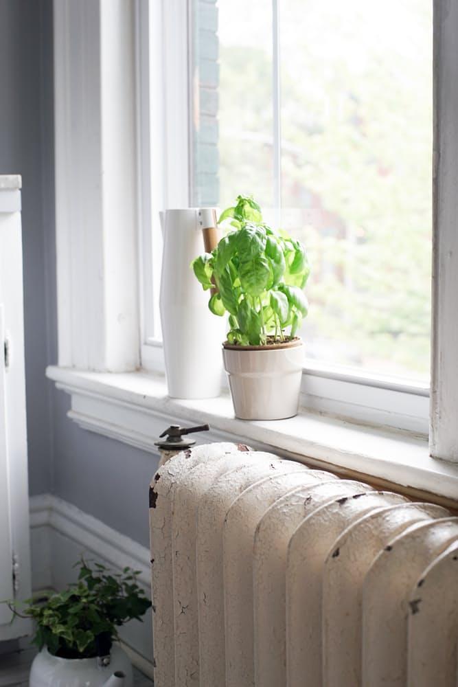 Интерьер дома в скандинавском стиле: цветы на подоконнике