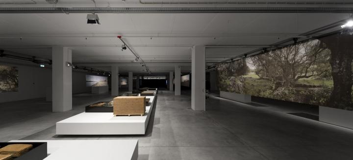 Современный интерьер выставочного зала - Фото 3