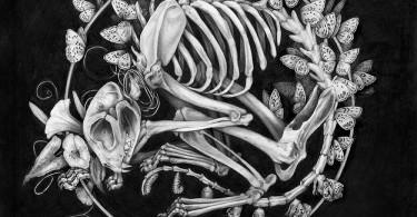 Иллюстрации из альбома «Путаница» от Кристины Мрозик и Зои Келлер