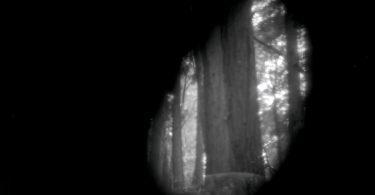 Камера-обскура от Дэвида Джанеско и Адама Донелли: поэтические образы пейзажных фотографий