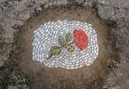 Джим Бэчор: мозаичные заплатки с изображением цветов на дорожном покрытии