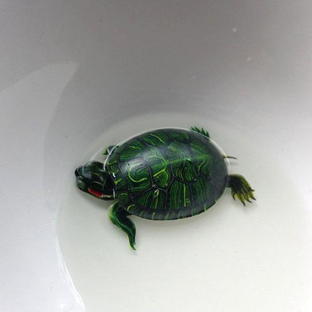 Рисунок черепахи
