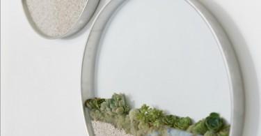 Круглые стеклянные террариумы для растений от Ким Фишер