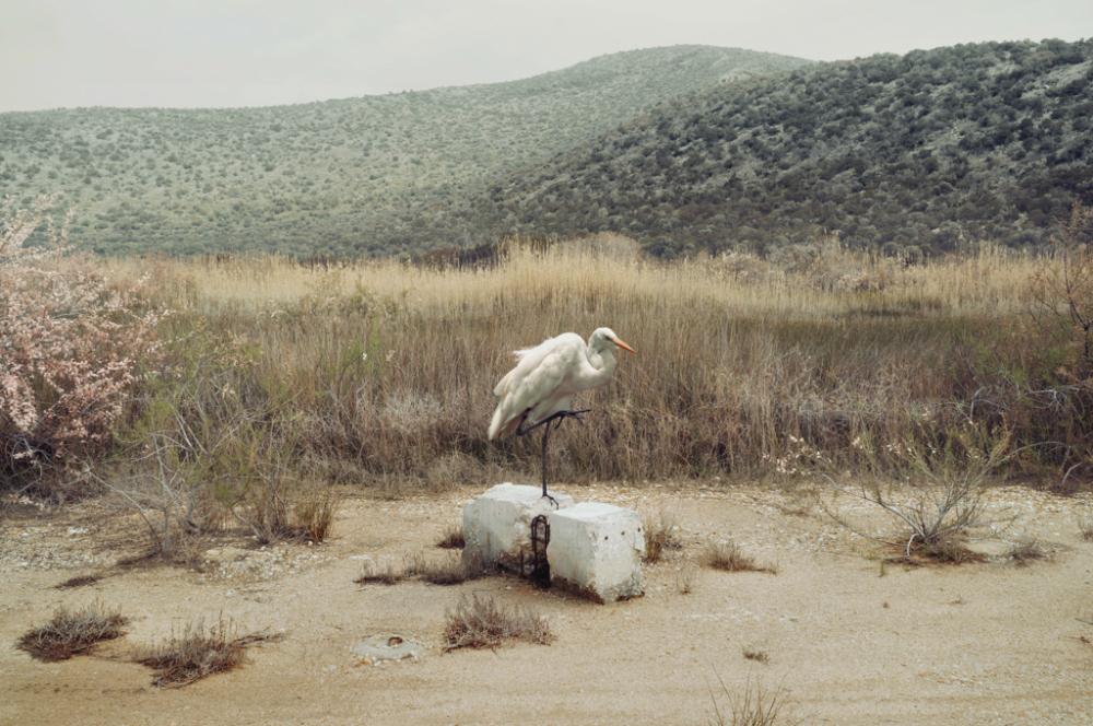 Ожившая мифология в пейзажных снимках от Петроса Коублиса