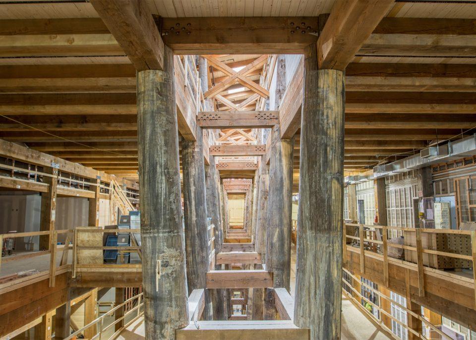 Тематический парк США: интерьер ковчега