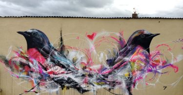 L7M: изображения птиц из хаотичных линий и ярких брызг аэрозольной краски
