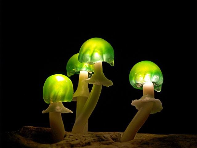 Превосходные светильники в форме гриба от Yukio Takano