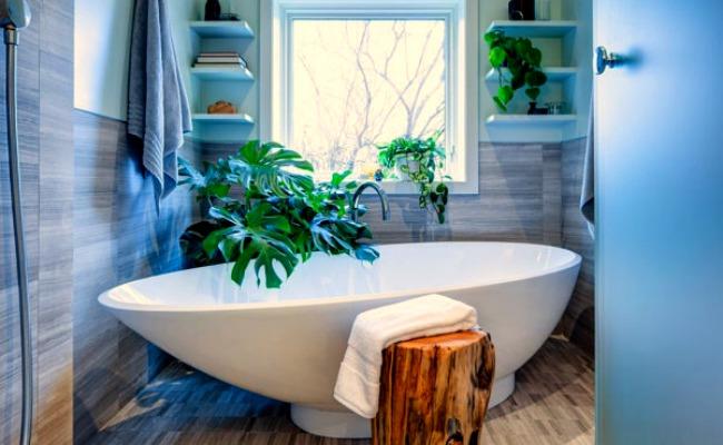 Растения в интерьере ванной комнаты от James Wong и David Cubero