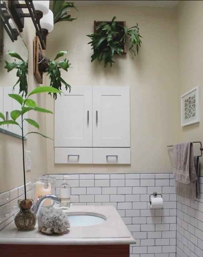 Папоротник в ванной комнате от James Wong и David Cubero