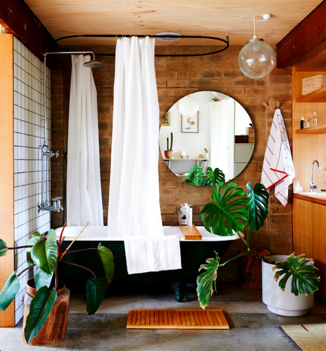 Монстера в ванной комнате от James Wong и David Cubero