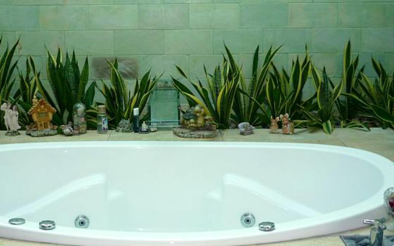 Растения в ванной комнате от James Wong и David Cubero