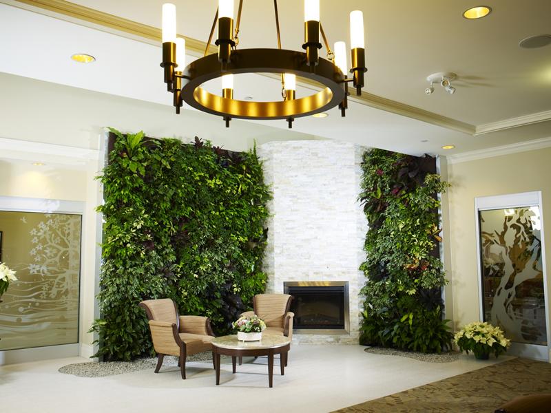 Живые растения на стене у камина