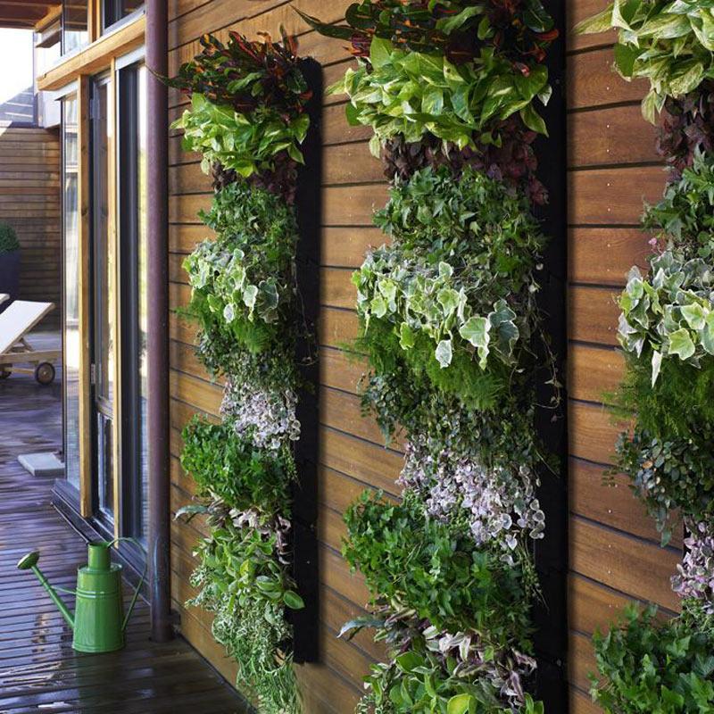 Вертикальная высадка растений