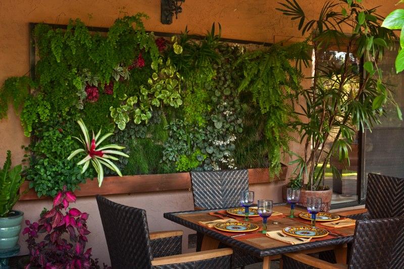 Цветы и растения на террасе
