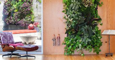 Вертикальный сад на деревянной стене в интерьере гостиной