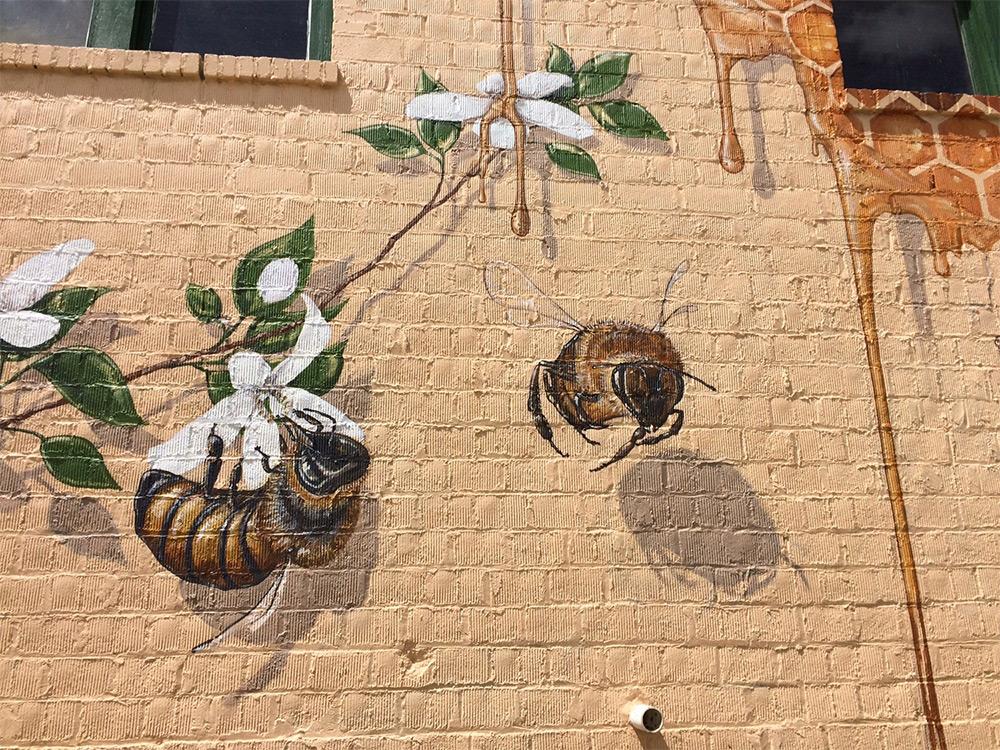 Хороший улей: креативный подход уличного художника Мэттью Уилли к спасению медоносных пчёл