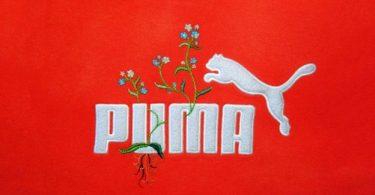 Джеймс Мерри: логотипы спортивных брендов, дополненные вышитыми цветочными узорами