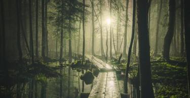 Финские пейзажи на потрясающих фотографиях от Микко Лагерстедта
