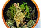 Дрю Мозли: миниатюрные диорамы с изображением сказочных сцен из лесной жизни