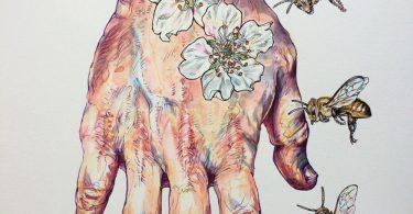 Ноэль Баджес Пью: акварельные иллюстрации, вдохновлённые природой