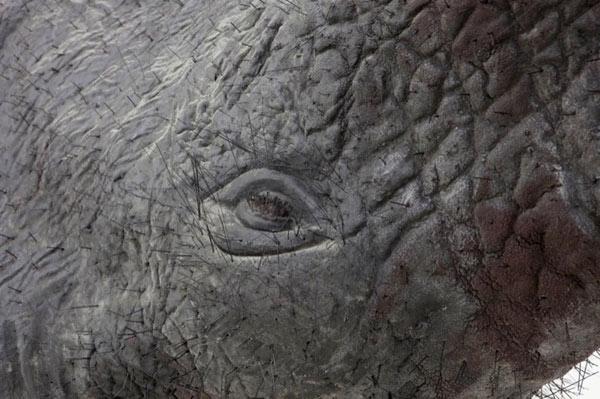 Парящий слон