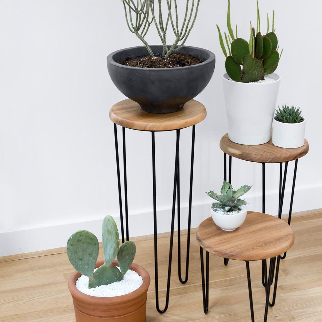 Необычный дизайн стульев: подставки для комнатных растений