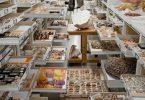 Национальный музей естественной истории в Вашингтоне (NMNH): фотографии коллекций из запасников