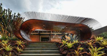 Оформление павильона выставки в Бразилии