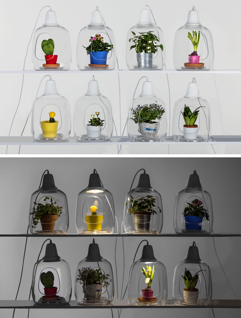 Natural beauty in glass: original lamps from Poland
