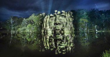 Фотопроект Филиппа Эшару: проблемы экологии тропических лесов