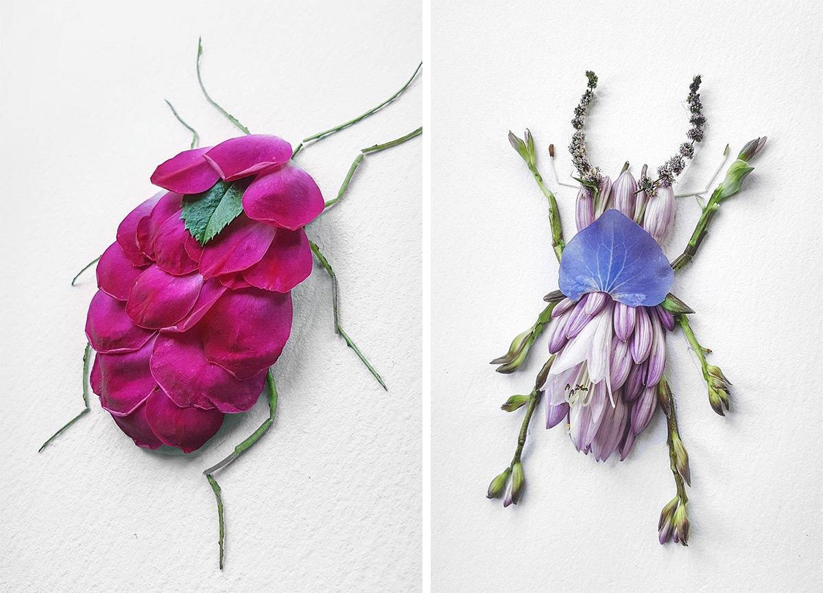 Natura Insects: цветочные композиции с изображением насекомых от Раку Инуэ