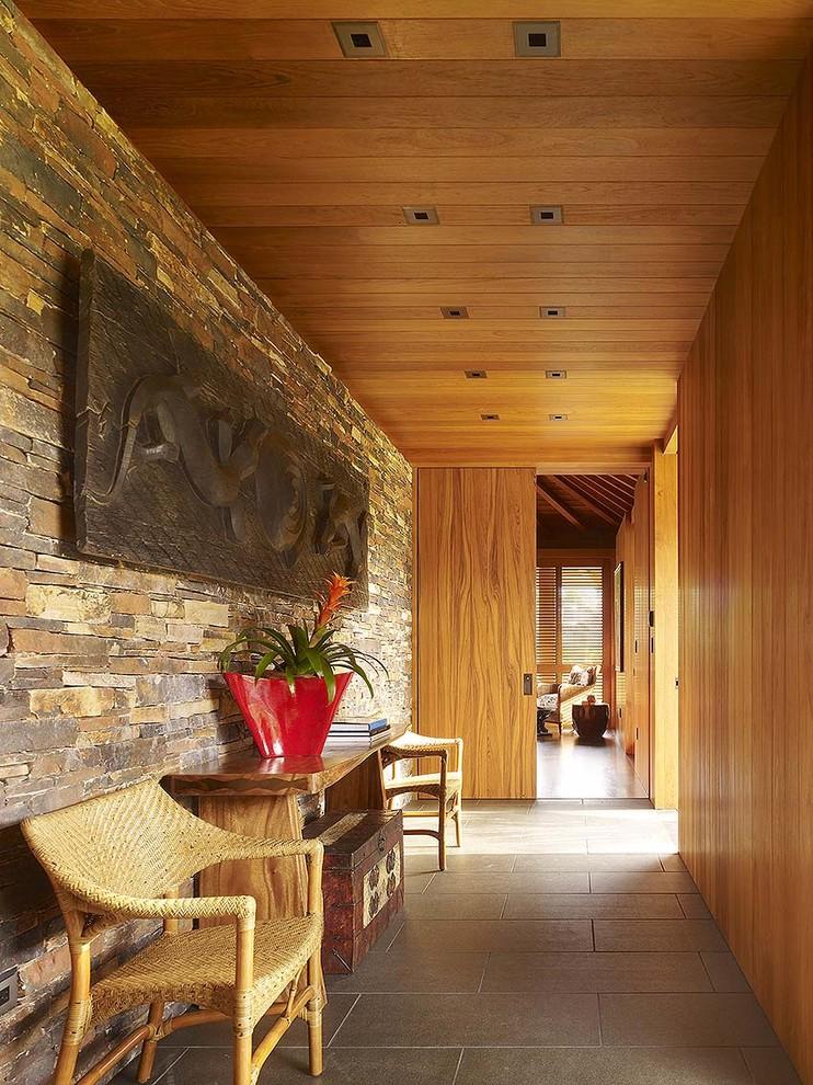 Plantas familiares de bromelias para un interior de casa tropical.