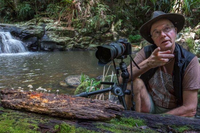 Мир грибов: специальные фото для трейлера Planet Earth II от Стива Аксофорда